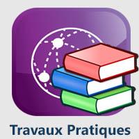 ZZZD Travaux Pratiques