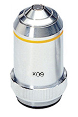 Objectif achromatique 60x : POD067085 1/4