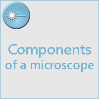 STUDY OF MICROSCOPE